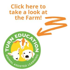 Take a look at TURN Education's Map